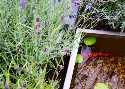 tuin-met-vijver-in-otterlo-0